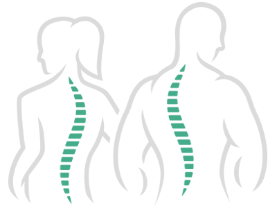 Spine Figures Graphics